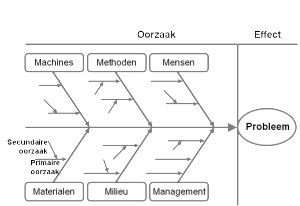 Visgraatdiagram - voorbeeld